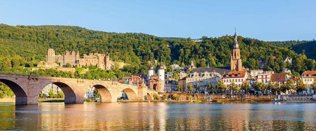 The Majestic Rhine