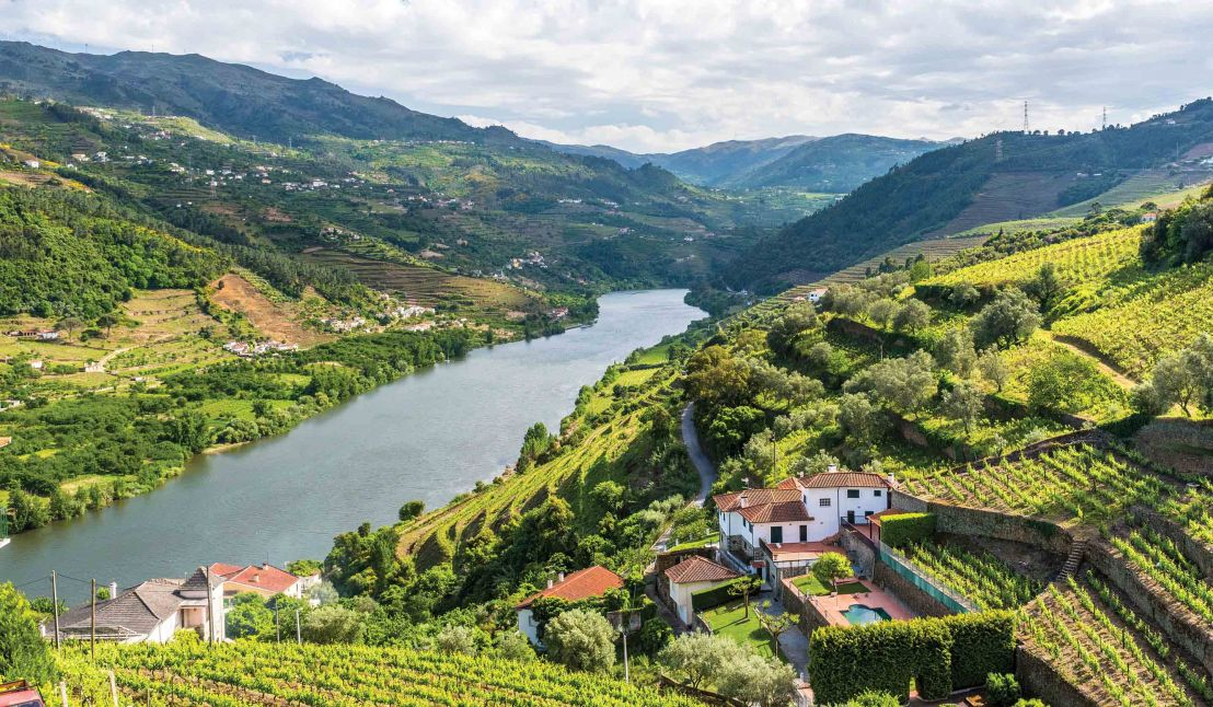 Villages and Vintages: Cruising the Douro River Valley