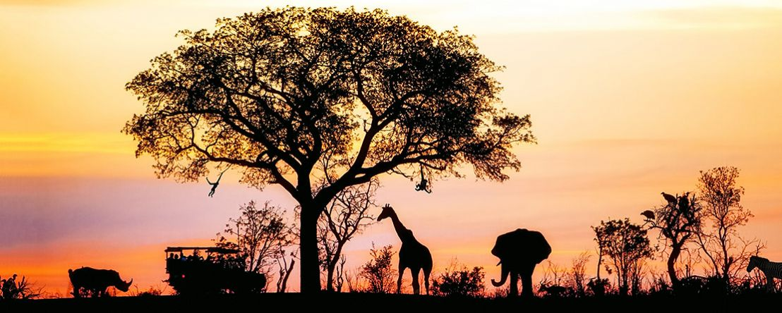 Kenya: A Classic Safari with Nairobi & Amboseli 2020 - 12 days from Nairobi to Nairobi