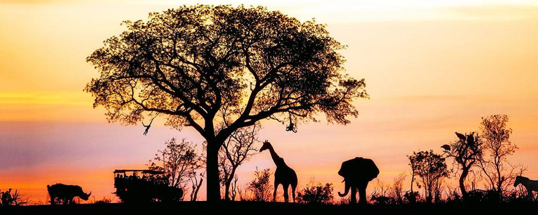 Kenya: A Classic Safari with Nairobi & Stay in Maasai Mara 2020 - 12 days from Nairobi to Nairobi