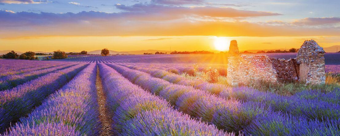Burgundy & Provence (Southbound) 2020 - 8 days St. Jean-de-Losne to Port-Saint-Louis
